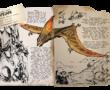 『ARK』PVPで強い恐竜紹介No010 タペヤラ