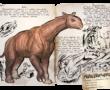 『ARK』PVPで強い恐竜紹介No004 パラケラテリウム«Paraceratherium»